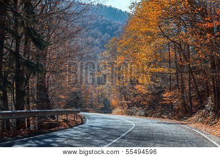 Mountain road in the autumn bright a sunny day
