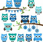 stock photo of owls  - Vector Collection of Boy Baby Shower Themed Owls and Branches - JPG