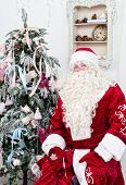 pic of saint-nicolas  - Saint Nicolas sits near the Christmas fir - JPG