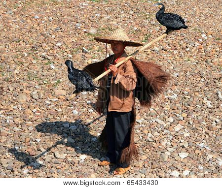 Yangshuo, China - Nov 5, 2007: Chinese Fisherman With Two Cormorants On His Shoulder, Guangxi Provin