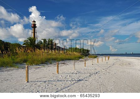 Sunny Beach Of Western Florida