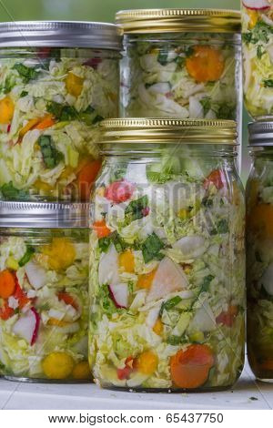 Home Made Cultured Or Fermented Vegetables