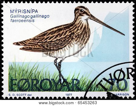 Common Snipe Stamp