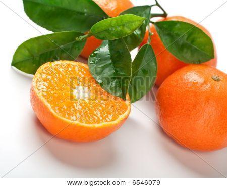 Mandarinen mit Blättern
