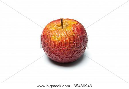 Closeup Of A Sluggish Apple