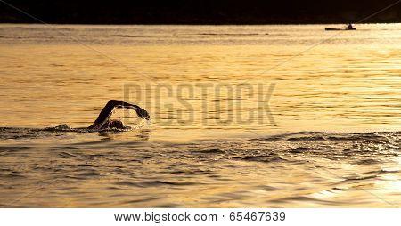 Sunrise ocean swim at Balmoral, Sydney