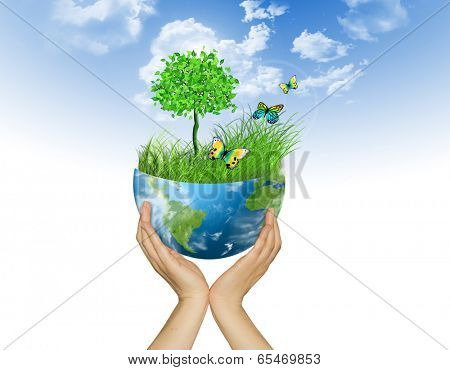 Environmental Concept. Globe  in the hands. Tree, grass and butterflies on half the globe