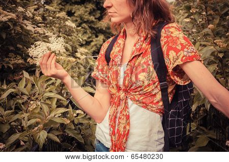 Young Woman Picking Elderflowers