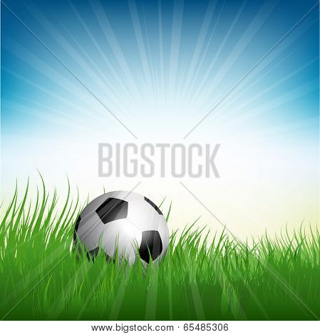 Illustration of a football or soccer ball nestled in grass