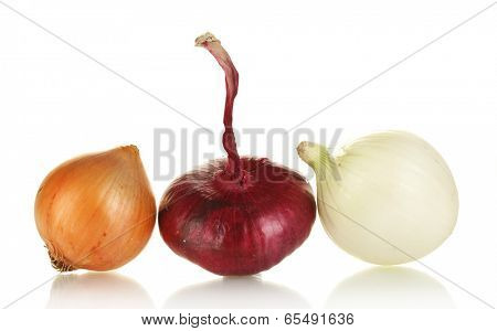 white, yellow and red onion isolated on white background