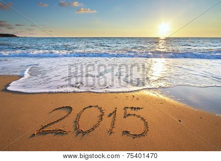 2015 year on the sea shore. Element of design.