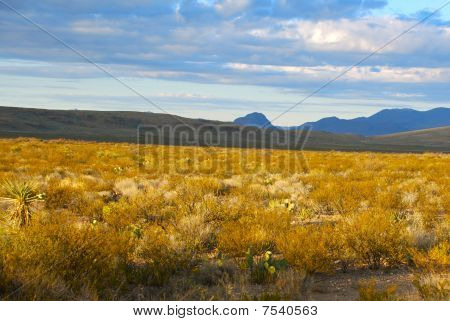 Big Bend country in West Texas