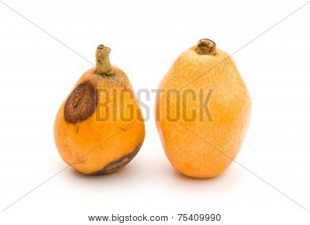 A Fresh Loquat Medlar And A Rotten Loquat Medlar On A White Background