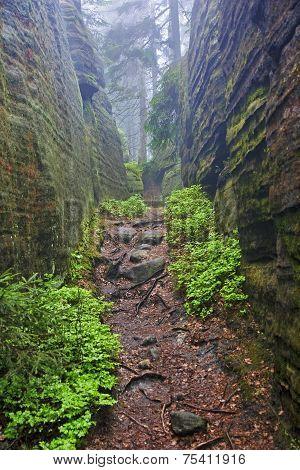The Narrow Path Among High Rocks