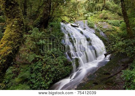 Kew Mae Pan, Waterfall In Hill Evergreen Forest Of Doi Inthanon National Park, Thailand