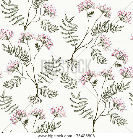 Valerian seamless pattern - medicine for heart