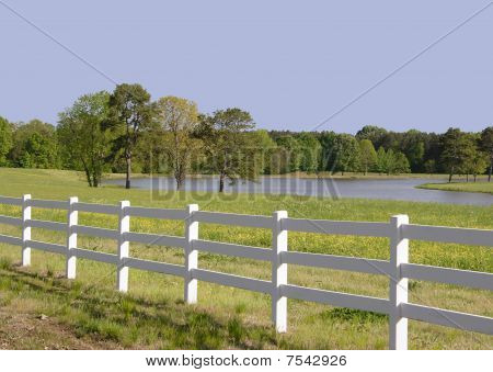 The Country Pasture