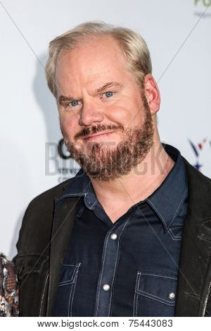 NEW YORK, NY - NOVEMBER 05: Jim Gaffigan attend 2014 Stand Up For Heroes at Madison Square Garden on November 5, 2014 in New York City.