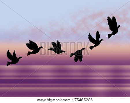 Flying Birds Shows Chill Fall And Frosty