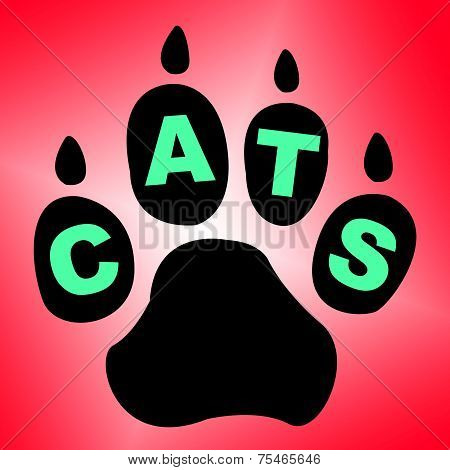 Cats Paw Shows Pet Services And Feline