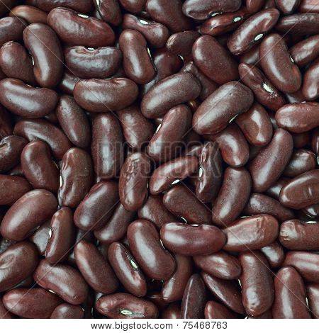 Black Turtle Beans Texture Background Or Pattern. Raw Food.