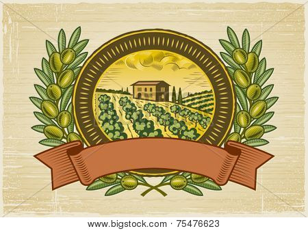 Olive harvest label. Vector