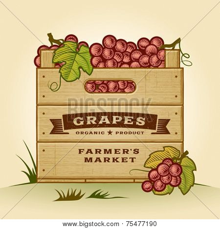 Retro crate of grapes. Editable EPS10 vector illustration with clipping mask and transparency.