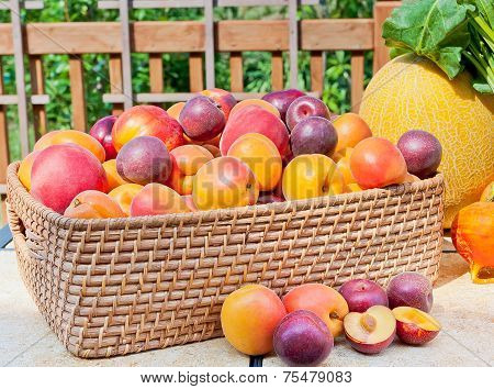 Pile Of Colorful Summer Fruits
