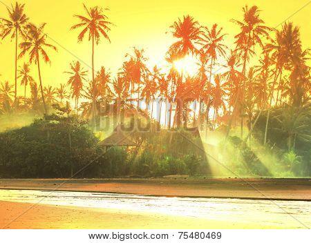 Bamboo huts on tropical island