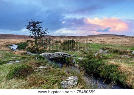 Stone Clapper Bridge On Dartmoor