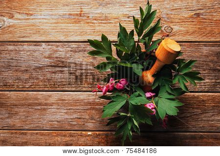 Flowers Bleeding Heart In Mortar With Pestle