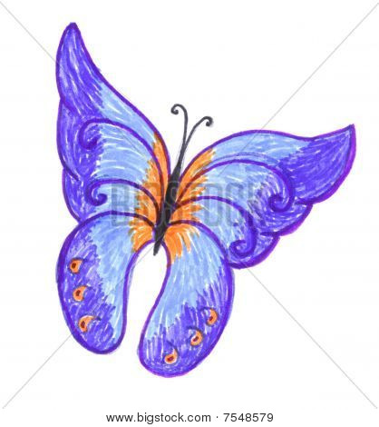 butterfly, stylish colored drawing