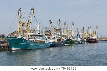 Fishing Vessels at Texel