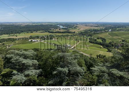 Vinyards Of Sancerre View
