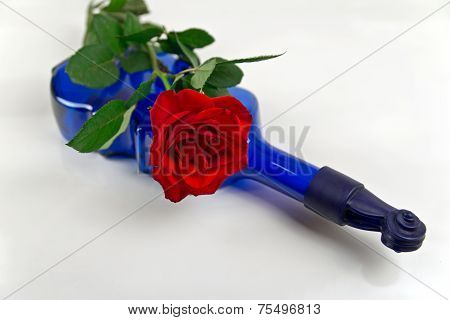 Red rose on blue wine bottle