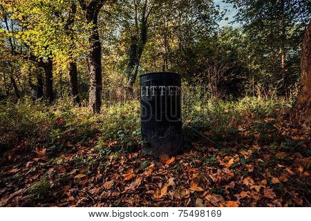 Litter Bin In A Forest