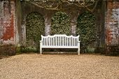 pic of english ivy  - A single white bench in front of an ivy-covered brick wall at the end of a gravel pathway