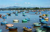 pic of coracle  - Great landscape of Asian country colorful Vietnamese beach with group of vibrant coracle on seaside blue sky fresh air in sunny day amazing sight for Vietnam travel at fishing village in summer - JPG