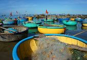 image of coracle  - Great landscape of Asian country colorful Vietnamese beach with group of vibrant coracle on seaside blue sky fresh air in sunny day amazing sight for Vietnam travel at fishing village in summer - JPG