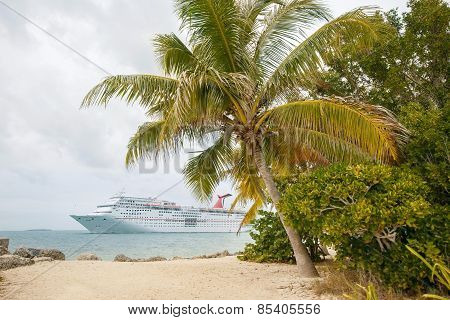 Cruise Ship By The Beach With Palm Trees
