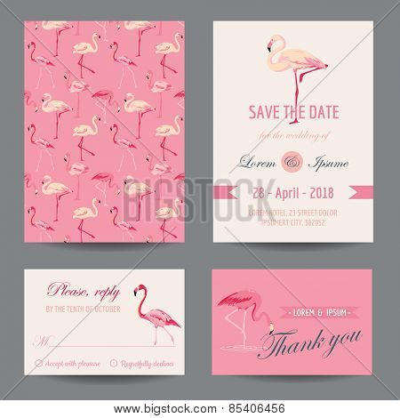 Invitation/Congratulation Card Set - Flamingo Theme - in vector