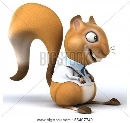 Fun squirrel