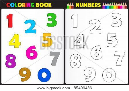 Coloring Activity Numbers