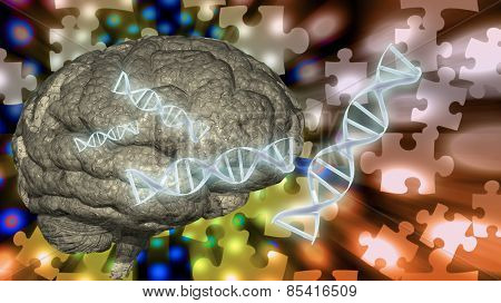 DNA and brain puzzle