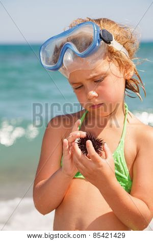Little girl wearing snorkeling mask looking at sea urchin, focus on hands