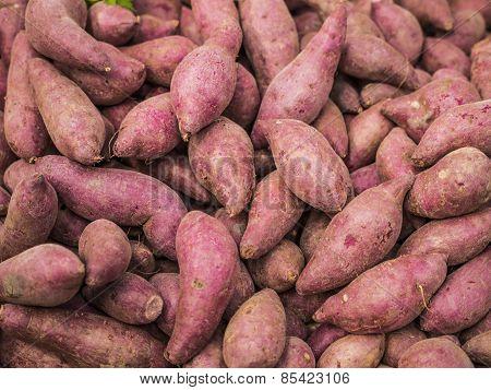 Sweet potato - Asian vegetable.