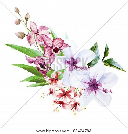 Nice orchids