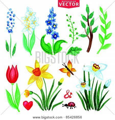 Watercolor Spring Flowers Set