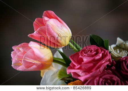 Beautiful Tulips With Water Drops