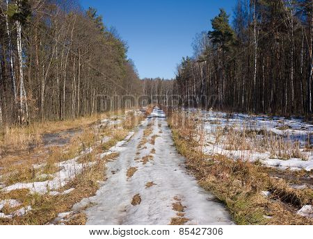 Spring Country Road With Melting Snow In Forest